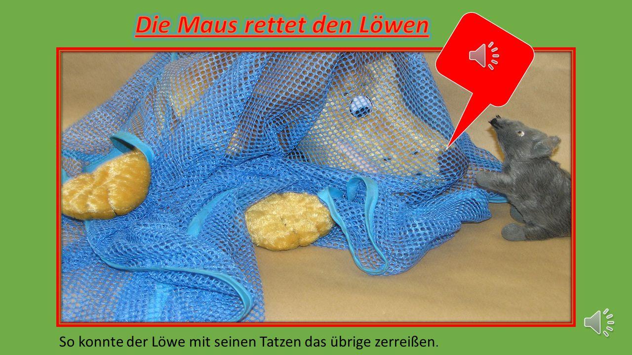 Die Maus rettet den Löwen