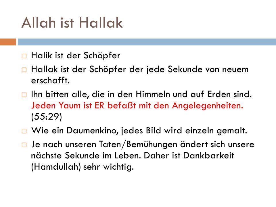 Allah ist Hallak Halik ist der Schöpfer