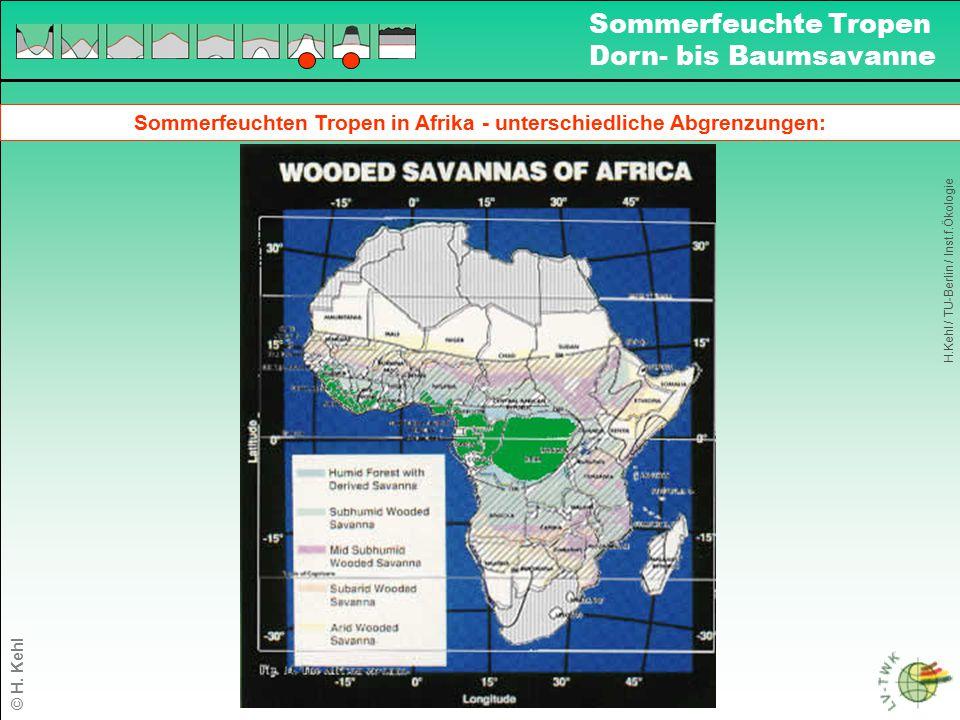 Sommerfeuchten Tropen in Afrika - unterschiedliche Abgrenzungen: