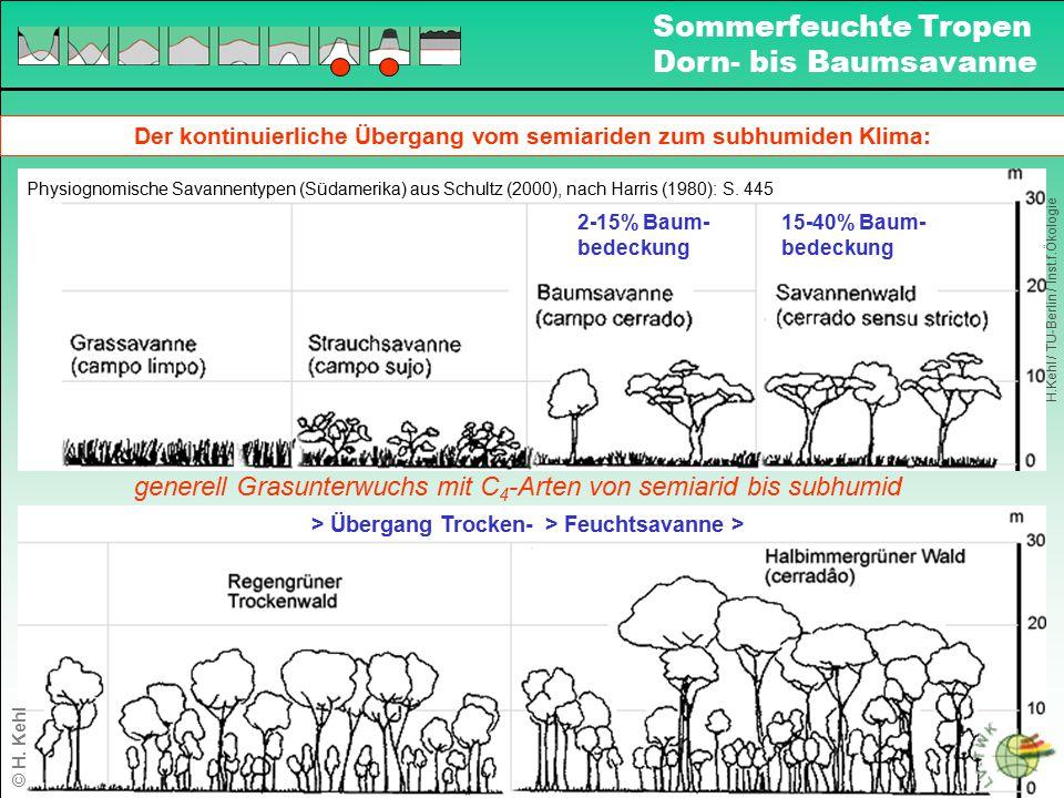 Der kontinuierliche Übergang vom semiariden zum subhumiden Klima:
