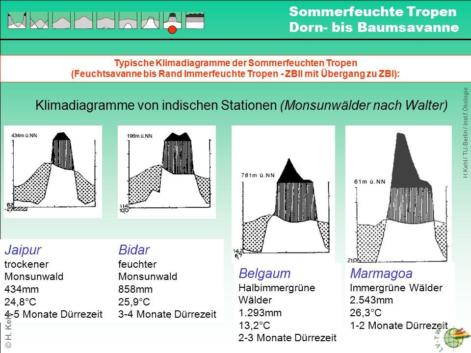 Typische Klimadiagramme der Sommerfeuchten Tropen