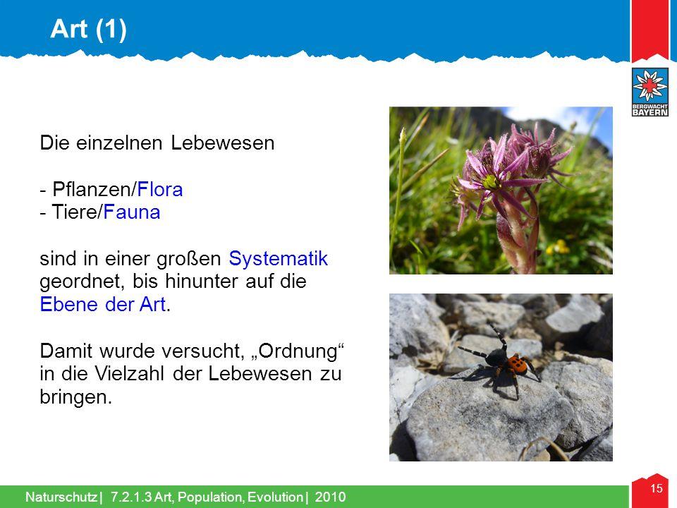 Art (1) Die einzelnen Lebewesen - Pflanzen/Flora - Tiere/Fauna