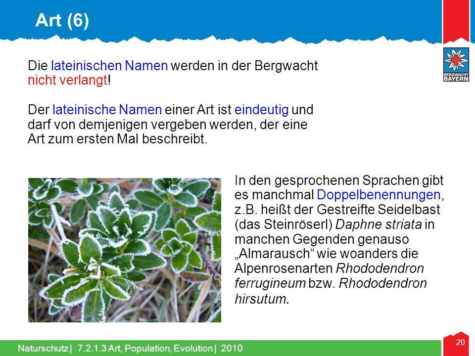 Art (6) Die lateinischen Namen werden in der Bergwacht nicht verlangt!
