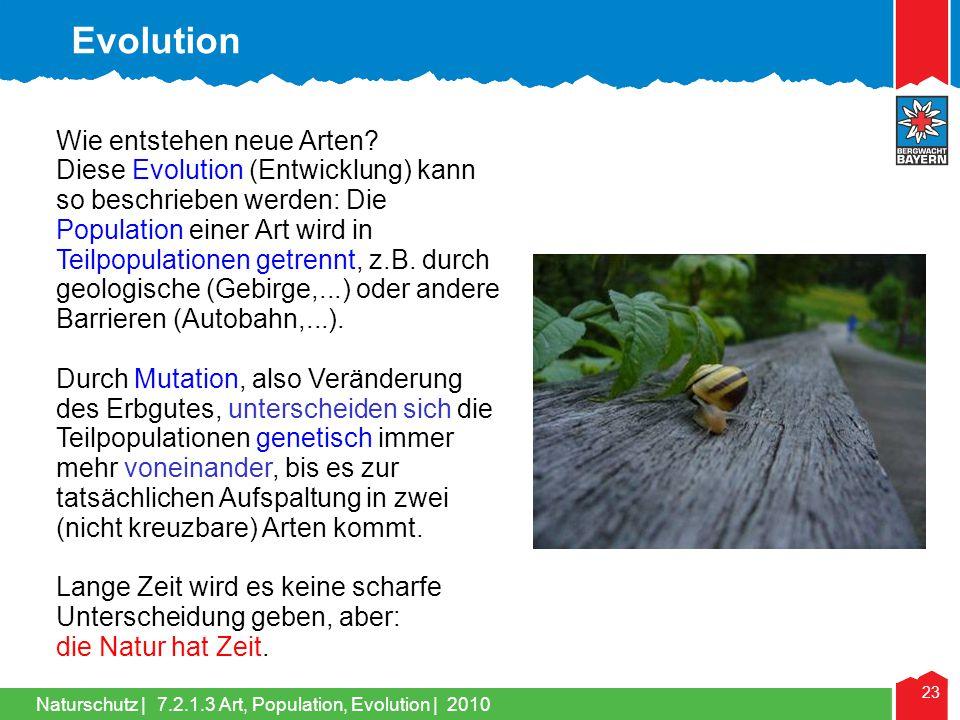 Evolution Wie entstehen neue Arten