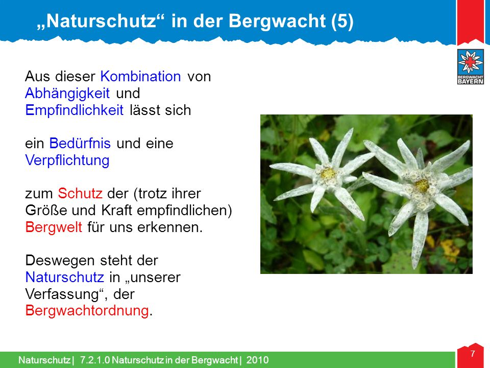 """Naturschutz in der Bergwacht (5)"