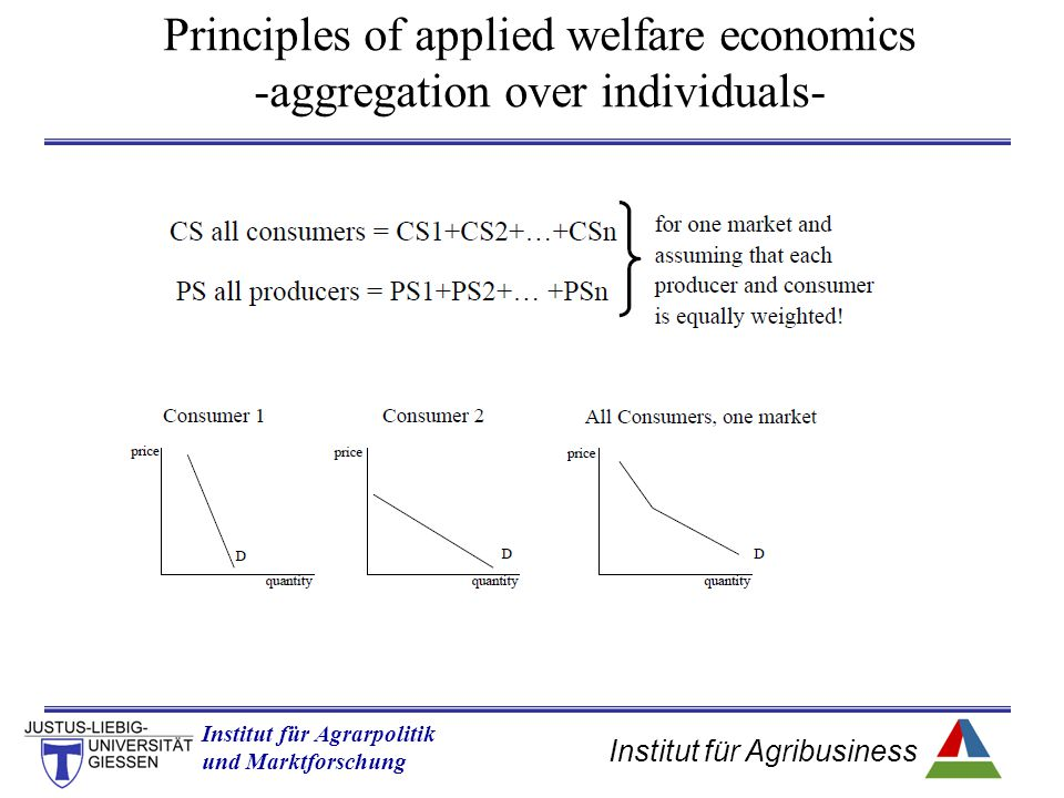 Principles of applied welfare economics -aggregation over individuals-