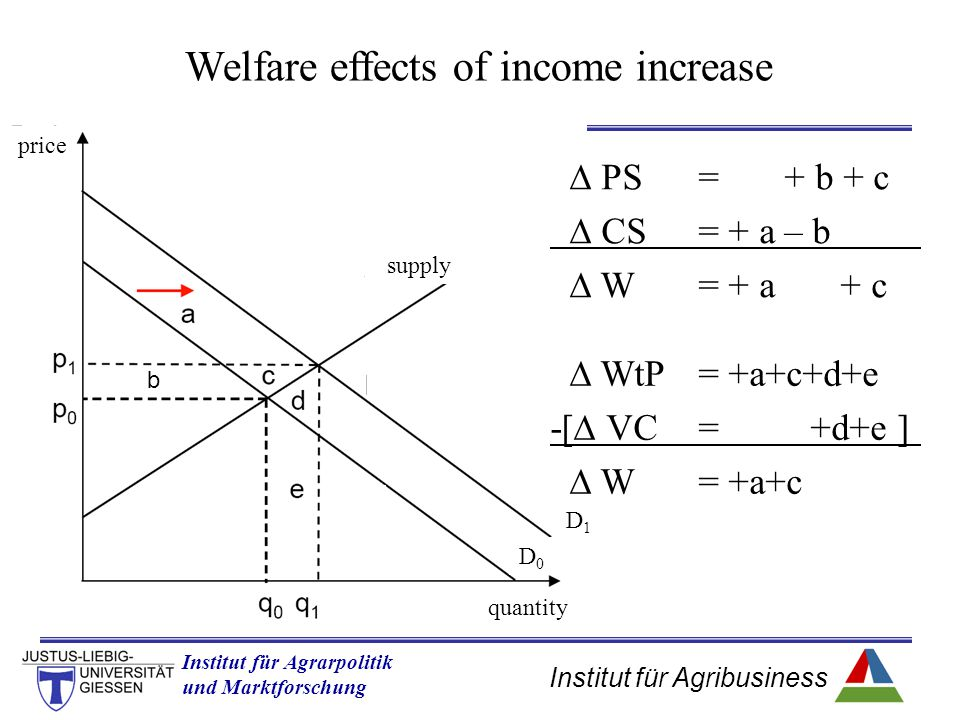 Welfare effects of income increase