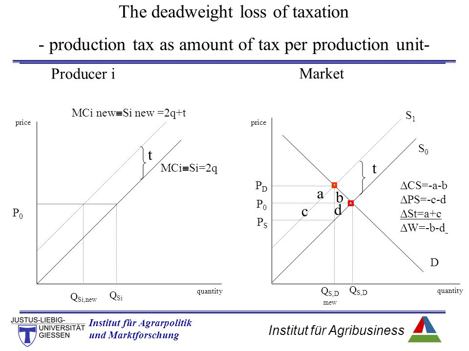 The deadweight loss of taxation