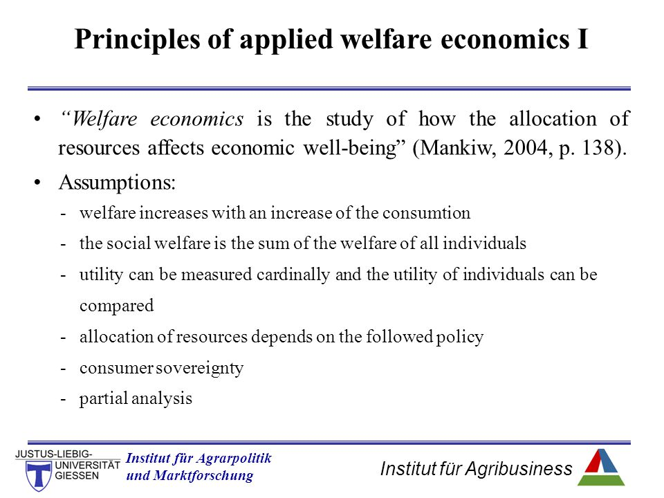 Principles of applied welfare economics I