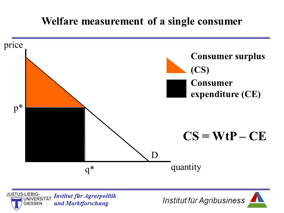 Welfare measurement of a single consumer