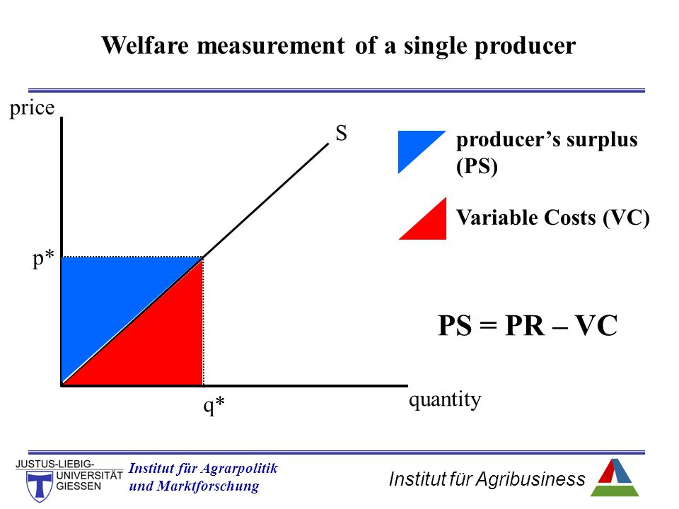 Welfare measurement of a single producer