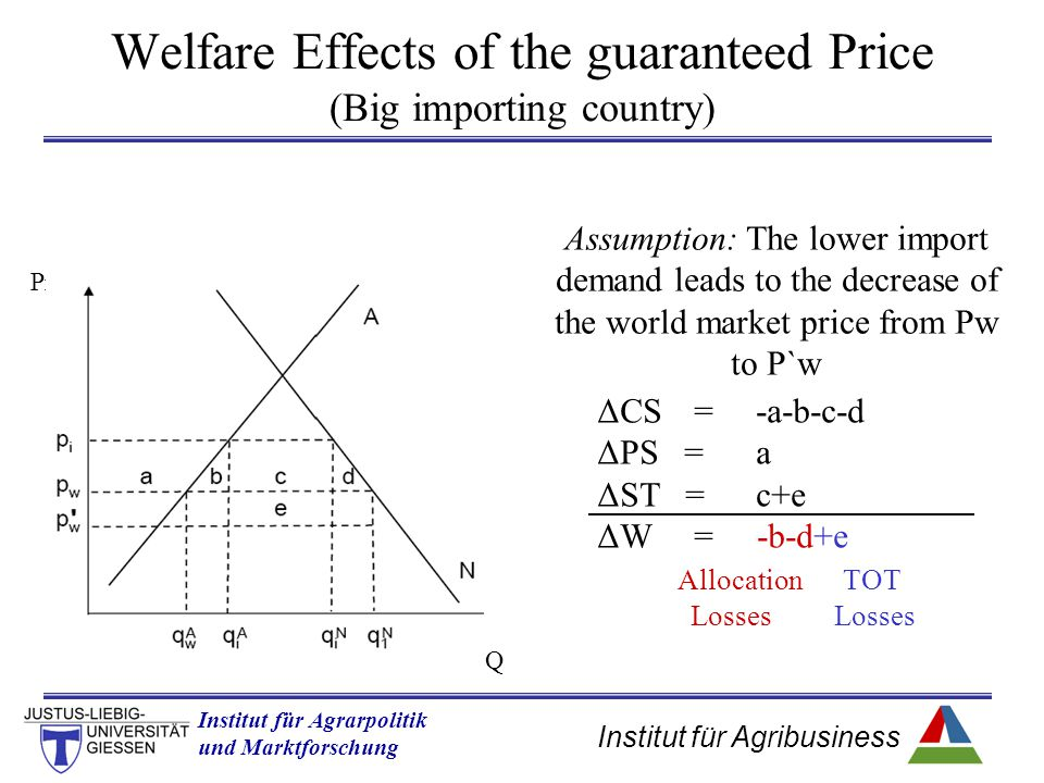 Welfare Effects of the guaranteed Price (Big importing country)