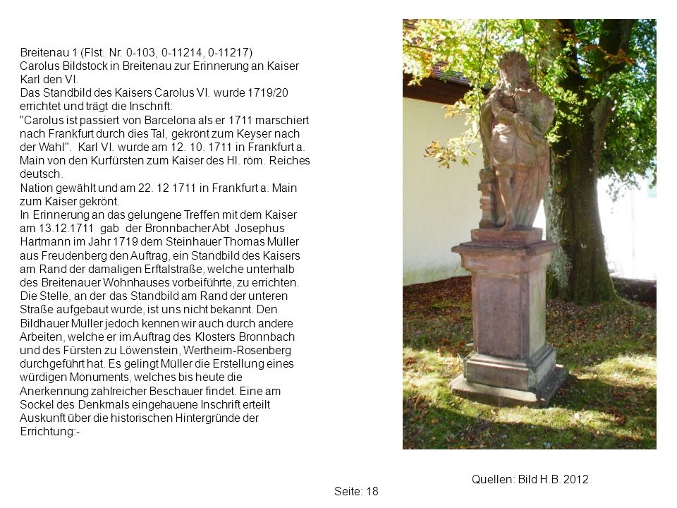 Breitenau 1 (Flst. Nr. 0-103, 0-11214, 0-11217)