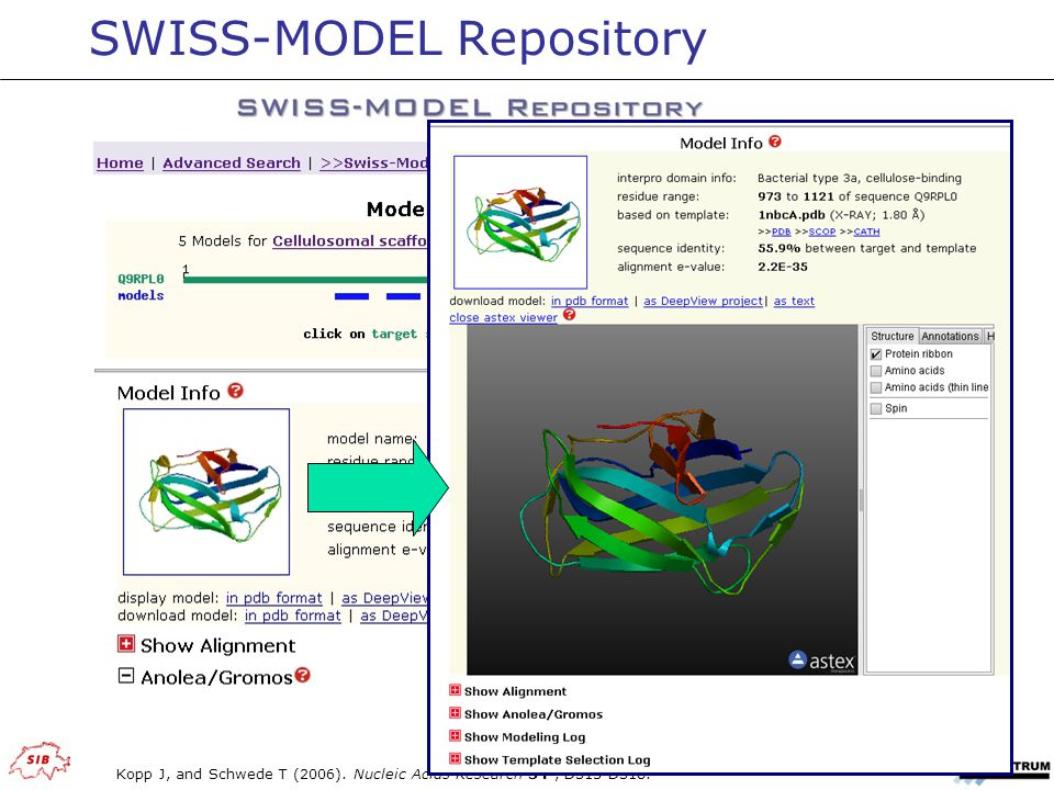 SWISS-MODEL Repository