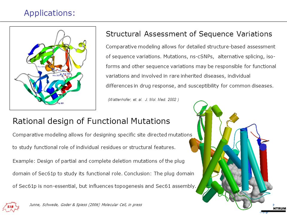Rational design of Functional Mutations