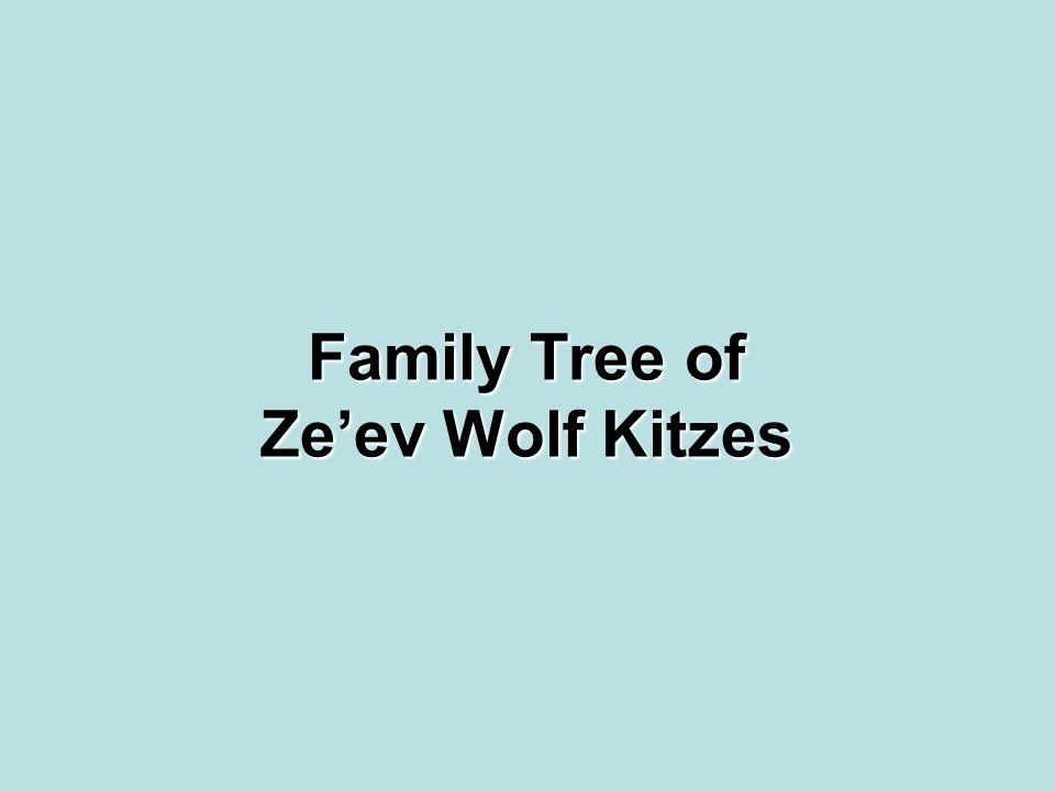 Family Tree of Ze'ev Wolf Kitzes