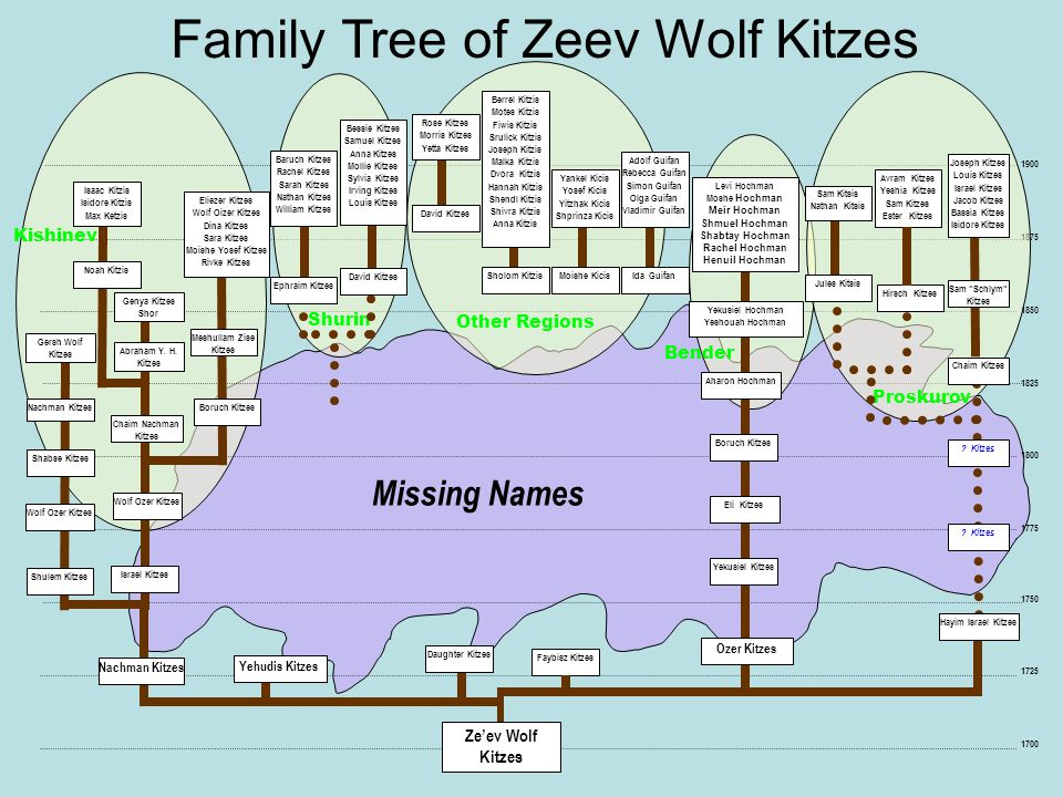 Family Tree of Zeev Wolf Kitzes