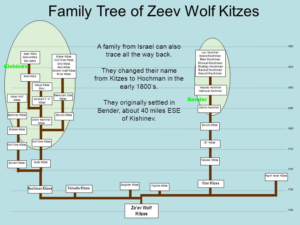 Family Tree of Zeev Wolf Kitzes