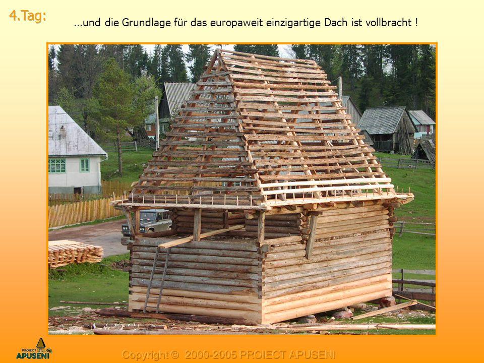 4.Tag: ...und die Grundlage für das europaweit einzigartige Dach ist vollbracht .