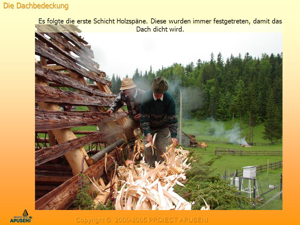 Die Dachbedeckung Es folgte die erste Schicht Holzspäne. Diese wurden immer festgetreten, damit das Dach dicht wird.