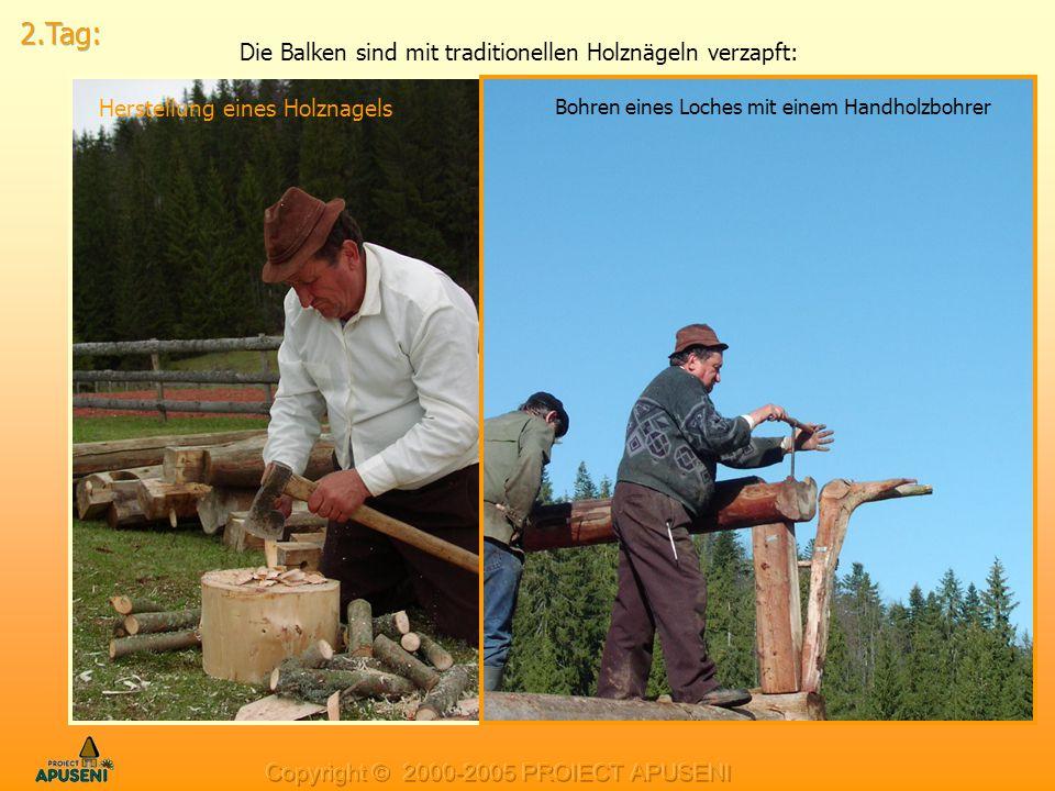Die Balken sind mit traditionellen Holznägeln verzapft:
