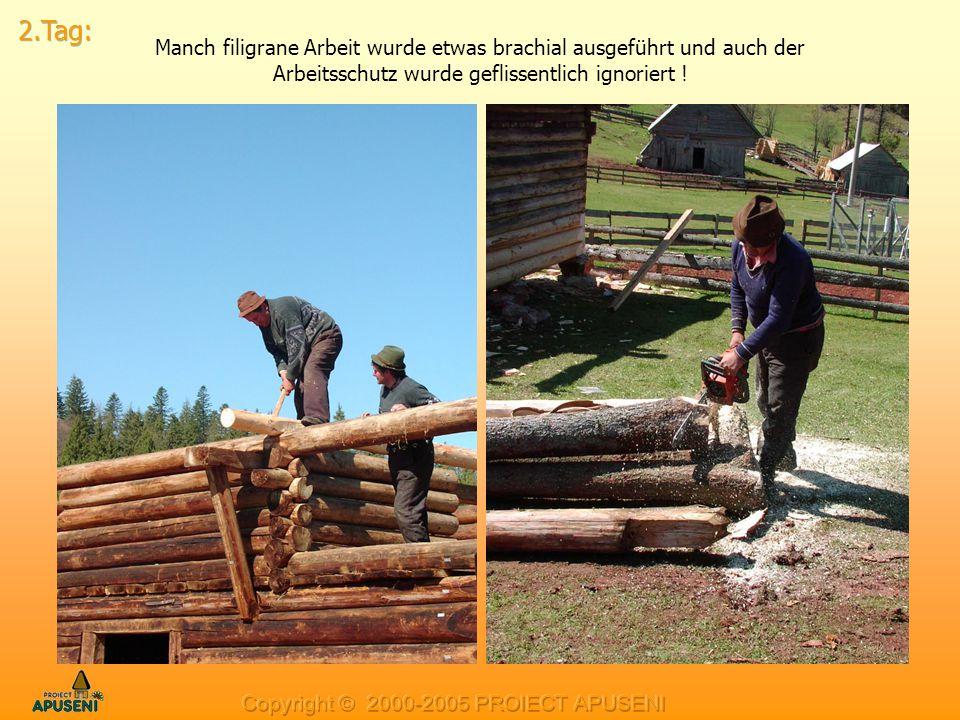2.Tag: Manch filigrane Arbeit wurde etwas brachial ausgeführt und auch der Arbeitsschutz wurde geflissentlich ignoriert !