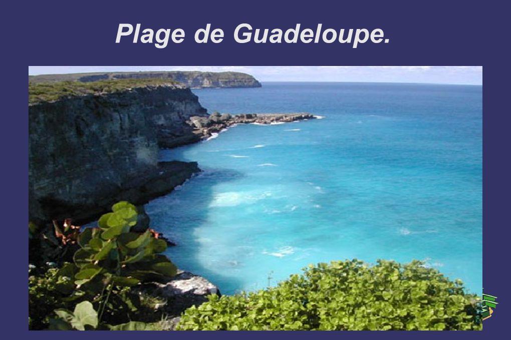 Plage de Guadeloupe.