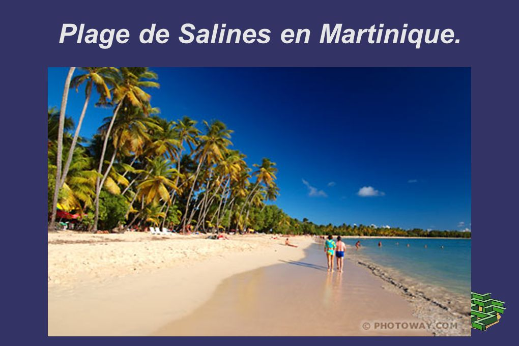 Plage de Salines en Martinique.