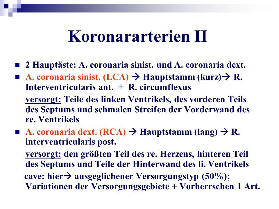 Koronararterien II 2 Hauptäste: A. coronaria sinist. und A. coronaria dext.