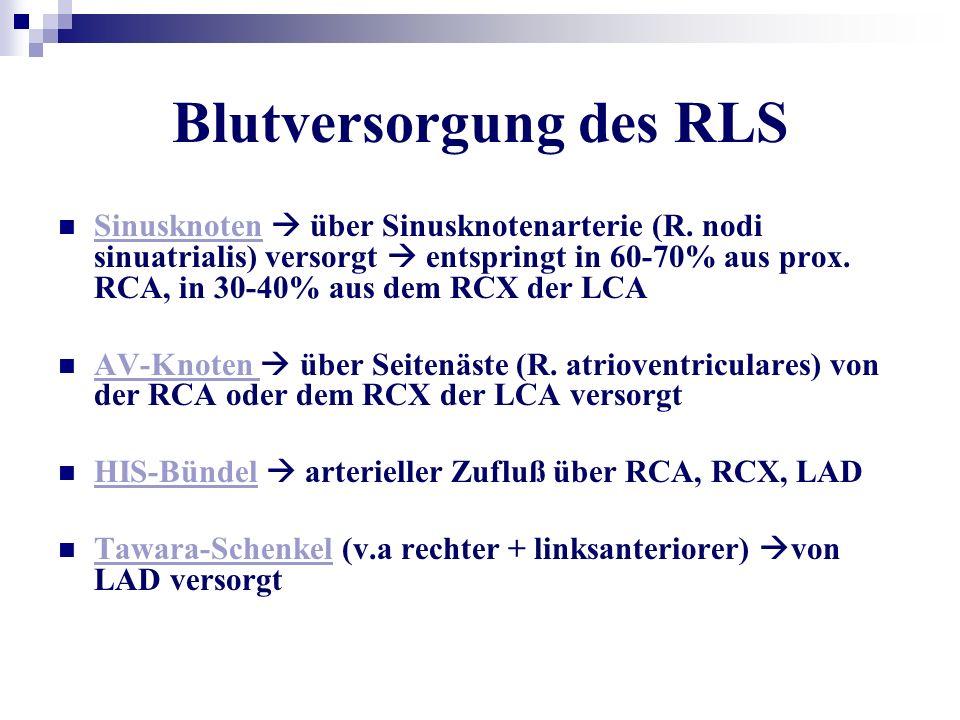 Blutversorgung des RLS