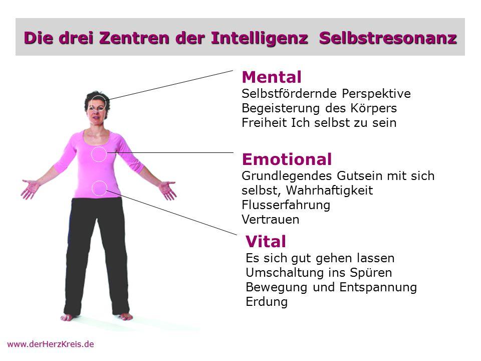 Die drei Zentren der Intelligenz Selbstresonanz