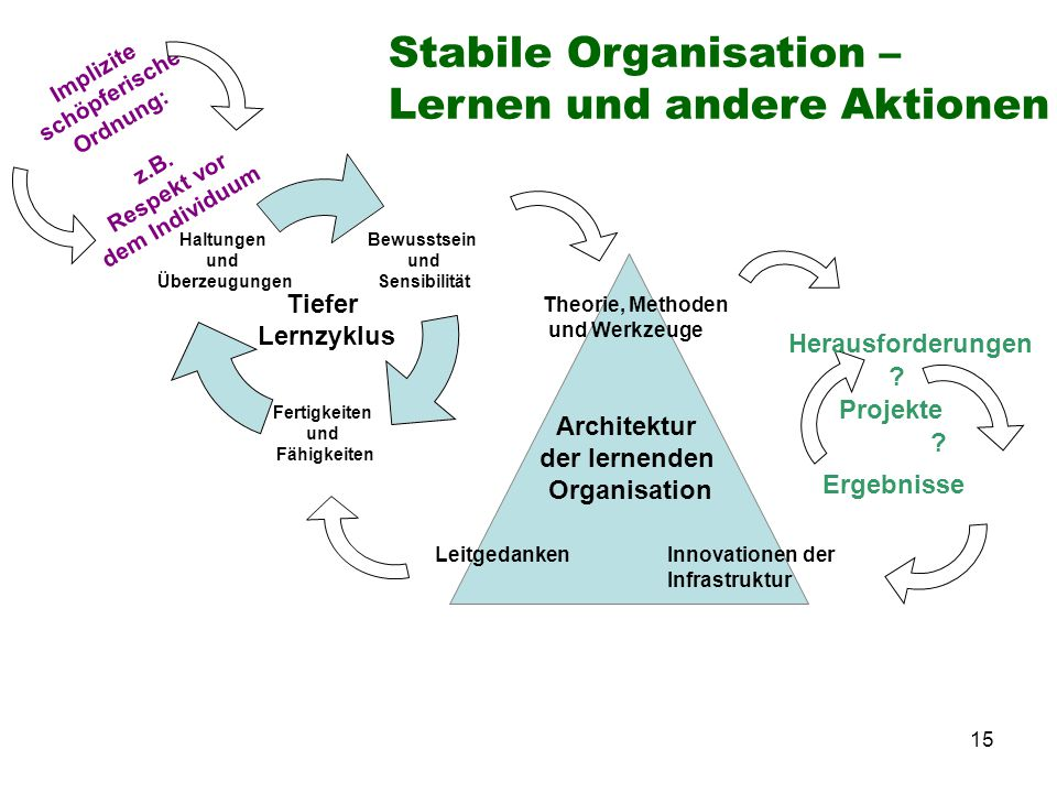Stabile Organisation – Lernen und andere Aktionen