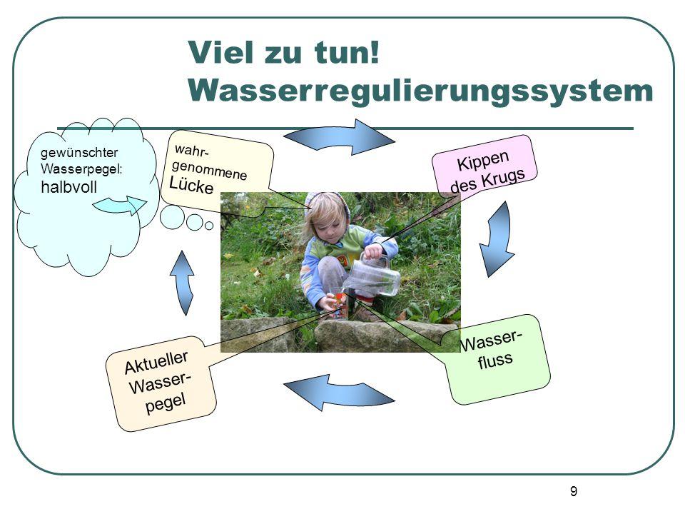 Wasserregulierungssystem