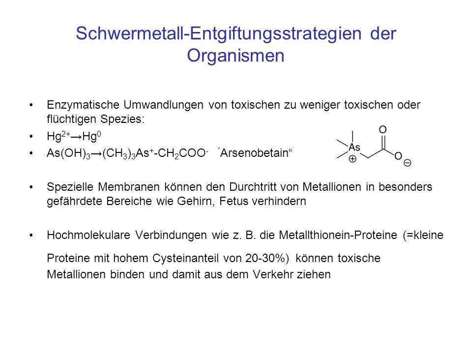 Schwermetall-Entgiftungsstrategien der Organismen