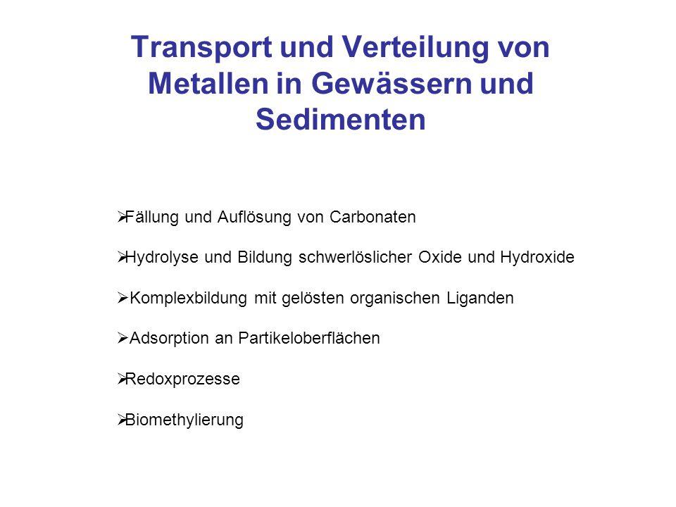 Transport und Verteilung von Metallen in Gewässern und Sedimenten