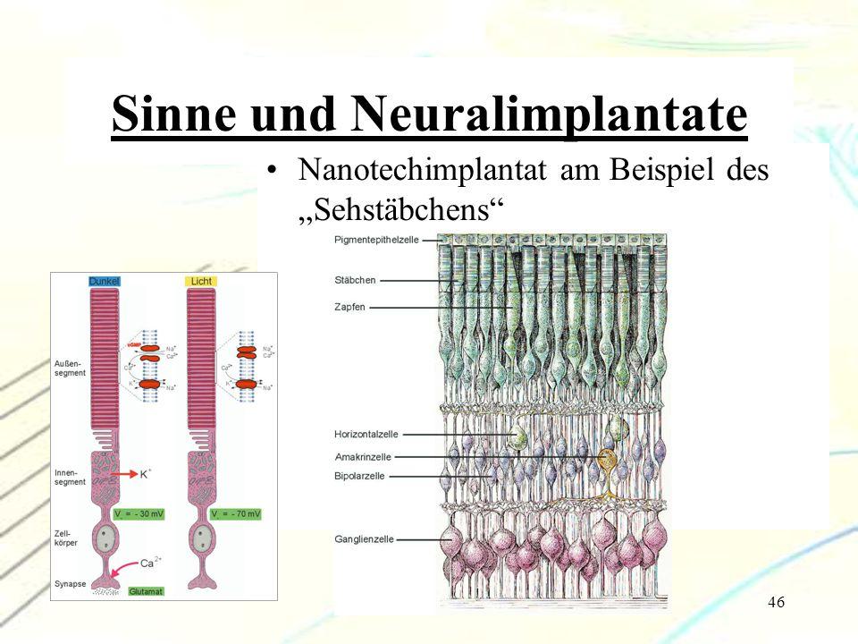 Sinne und Neuralimplantate