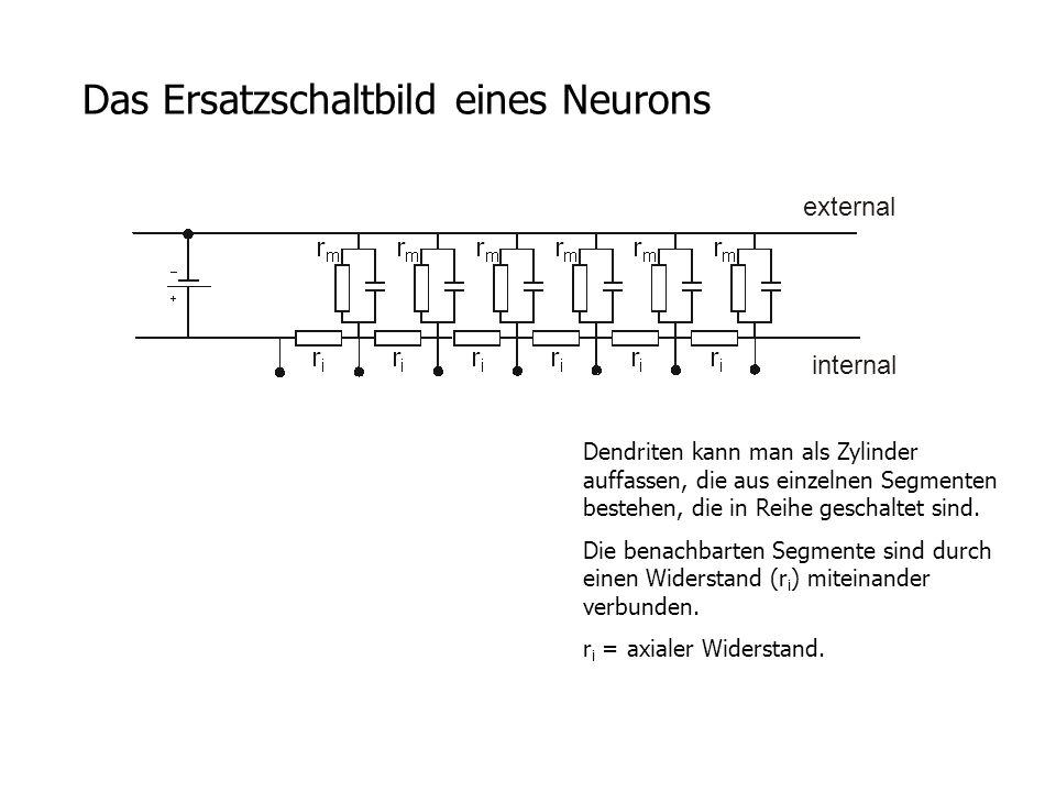 Das Ersatzschaltbild eines Neurons