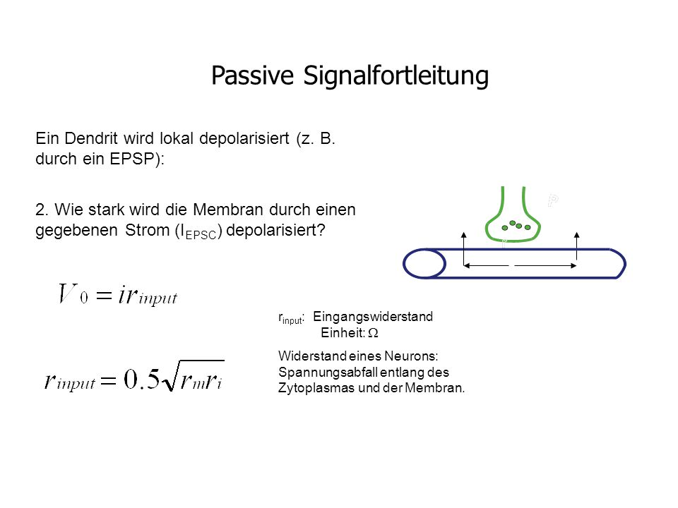 Passive Signalfortleitung