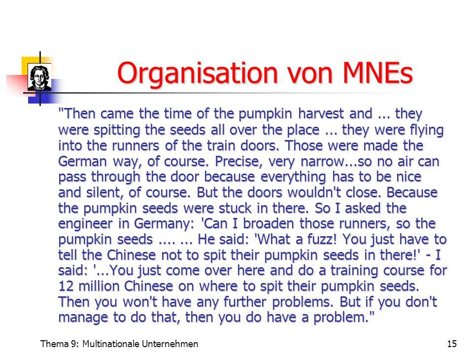 Organisation von MNEs