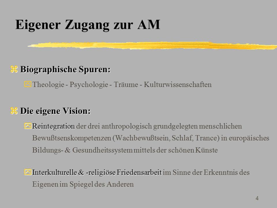 Eigener Zugang zur AM Biographische Spuren: Die eigene Vision: