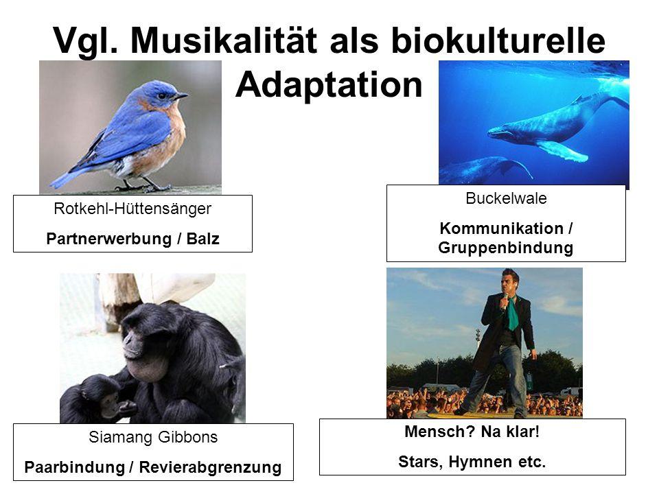 Vgl. Musikalität als biokulturelle Adaptation