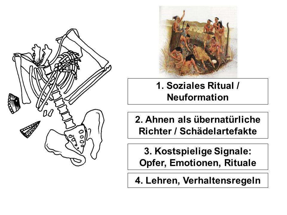 1. Soziales Ritual / Neuformation