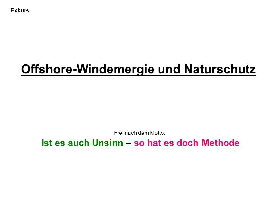 Offshore-Windemergie und Naturschutz