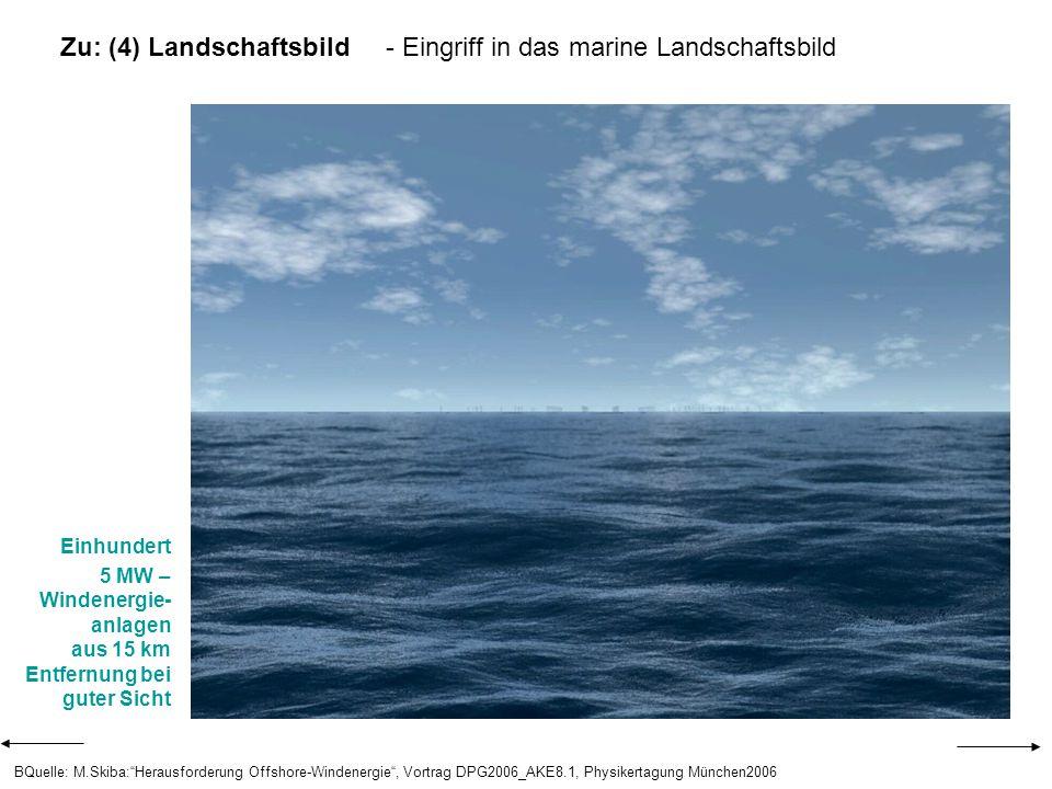 Zu: (4) Landschaftsbild - Eingriff in das marine Landschaftsbild