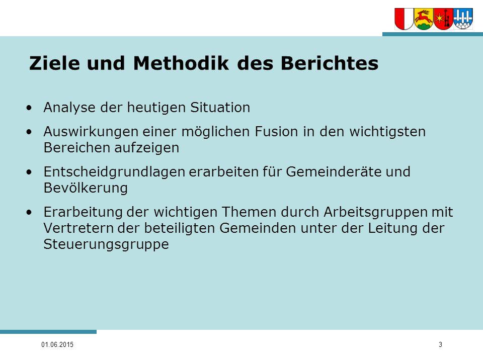 Ziele und Methodik des Berichtes