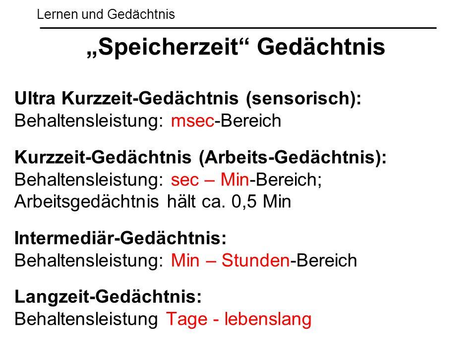 """""""Speicherzeit Gedächtnis"""
