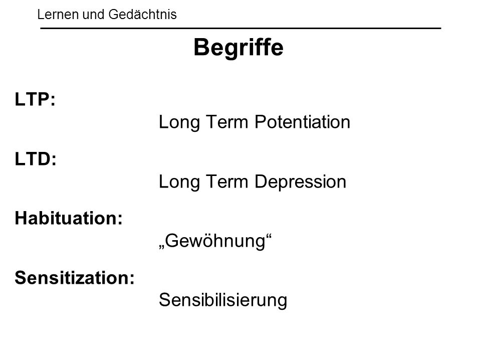 Begriffe LTP: Long Term Potentiation LTD: Long Term Depression
