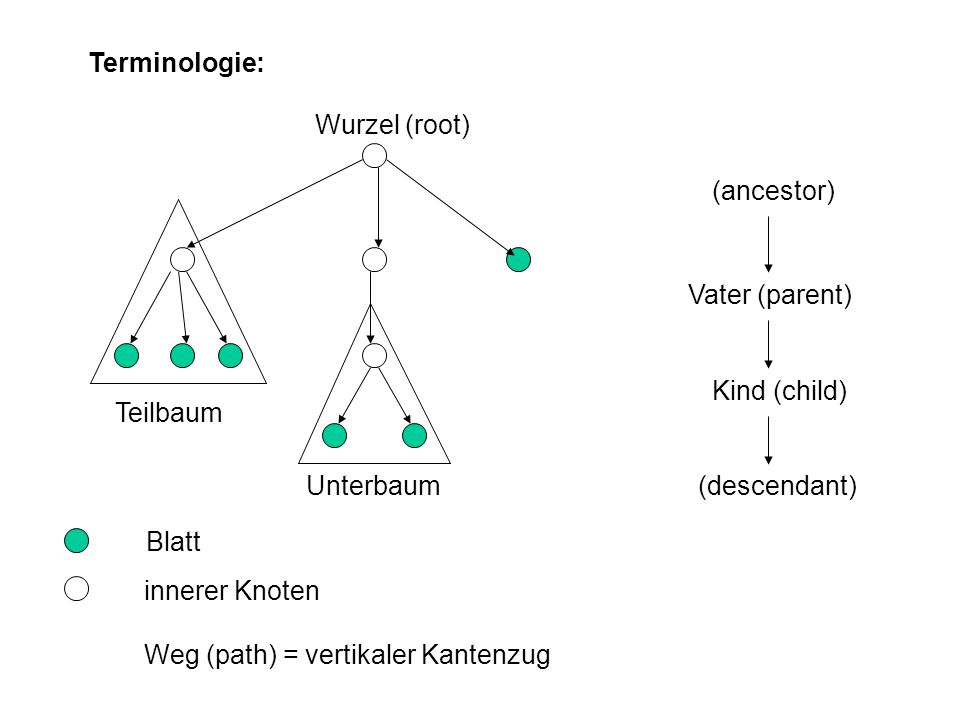 Terminologie: Wurzel (root) (ancestor) Vater (parent) Kind (child) Teilbaum. Unterbaum. (descendant)