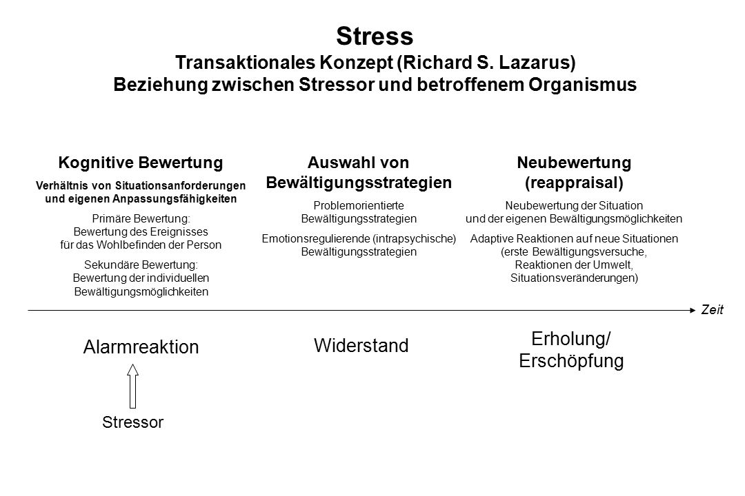 Stress Transaktionales Konzept (Richard S. Lazarus)
