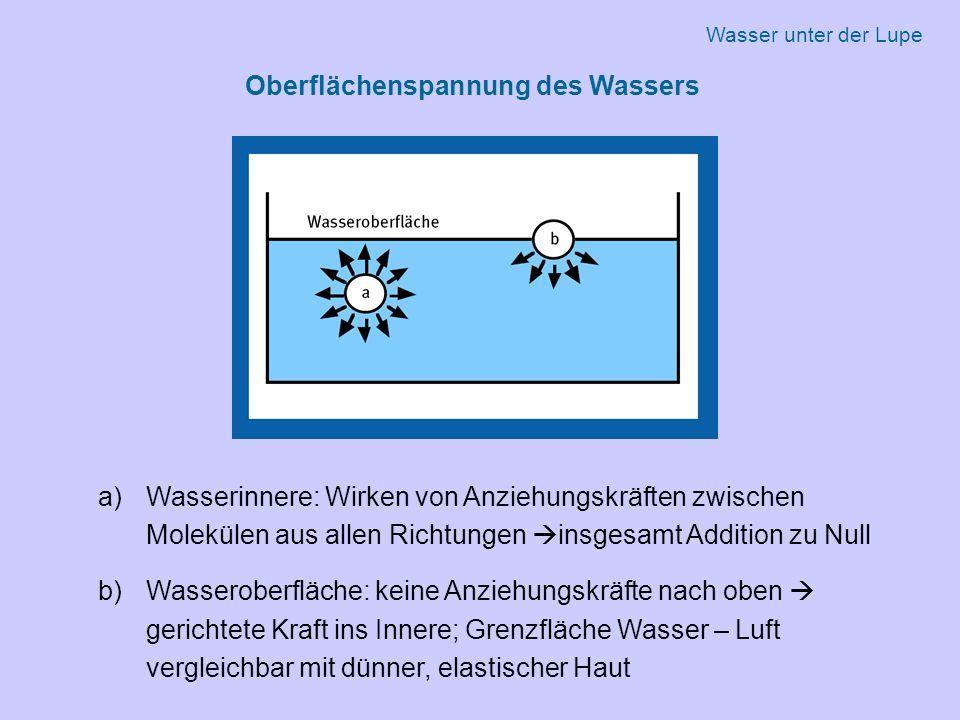 Oberflächenspannung des Wassers